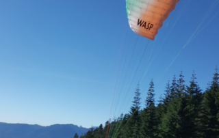 Tom Furst Wasp Paraglider